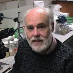 Prof Brian Charlesworth, University of Edinburgh